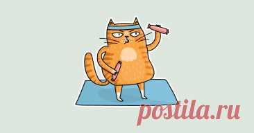 Физическая активность — 7 простых советов, как выполнить недельный минимум • Лайвли — журнал здорового человека Физическая активность — сколько нужно в неделю для развития выносливости и хорошего самочувствия Физическая активность необходима организму даже, если нет цели похудеть или нарастить мышцы. Сколько нужно заниматься в неделю и как эту норму выполнить.