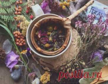 ༺🌸༻Травяной гороскоп. Лечебные травы и 12 знаков Зодиака. Какое ты растение?