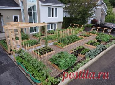 Красивый огород на даче своими руками: фото идеи, как оформить стильно грядки на даче
