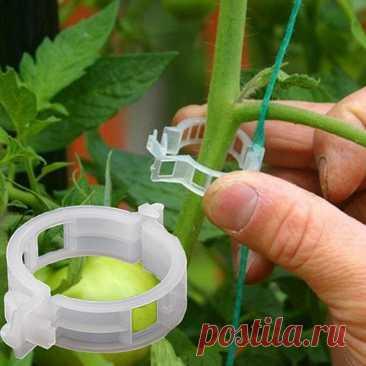 296.34руб. 27% СКИДКА|100 шт./компл. многоразовые пластиковые зажимы для поддержки растений, Подвесные Зажимы для растений, садовых, теплиц, овощей, помидор|Каркасы и поддержки для растений|   | АлиЭкспресс Покупай умнее, живи веселее! Aliexpress.com