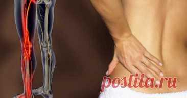 Приструнить седалищный нерв. Одно просто упражнение! - Журнал Советов Седалищный нерв — один из самых длинных и самых важных в нашем организме. Он начинается в нижней части позвоночника и ведет дальше к бедрам, коленям и пяткам. А отдельные его ветки тянутся даже к пальцам рук. Если седалищный нерв передавить, это может вызвать сильнуюбольв спине или в задней поверхности бедра. Наиболее часто эта проблема встречается […]