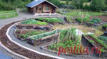 Как сделать грядки: красивые и практичные идеи для дачи - Дача Своими Руками Надоело работатьсогнувшись на огороде? Мы расскажем вам несколько простых способов как сделать гряд