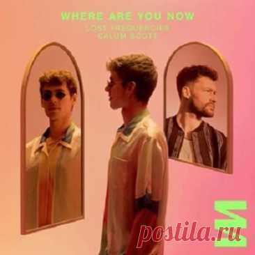 Lost Frequencies, Calum Scott - Where Are You Now (Extended Mix) free download mp3 music 320kbps