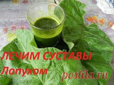 BURDOCK - THE MAY GINSENG - WE TREAT JOINTS