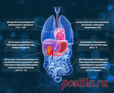 Как кислотно-щелочной баланс влияет на вирусы