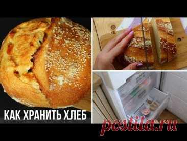 Хлеб будет постоянно свежим! Способы, как хранить хлеб, панеттоне, куличи и другую сдобу дома