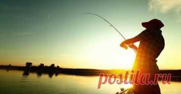 Хитрости рыбалки | Facebook