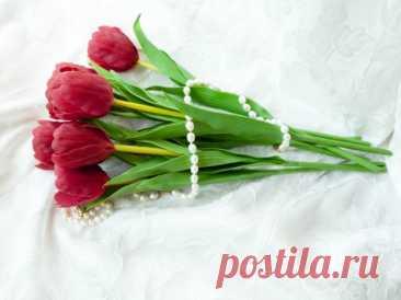 Тюльпаны из холодного фарфора. Мастер класс Антонины Мельниченко