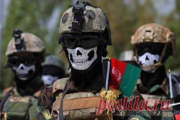 «Люди перестали бояться»: кто бросил вызов «Талибану*» в Афганистане Афганцы собирают «Северный альянс» против талибов * На севере Афганистана растет сопротивление «Талибану» *. В провинции Панджшер из остатков правительственных сил формируется новый «Северный альянс» ...