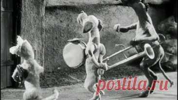 """N.2794 Мультфильм """"Весёлые музыканты"""". СССР, 1936 год"""