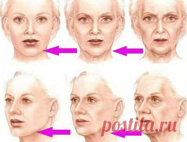 «Поставить на место» лицо возможно: упражнение, которое вернет молодость - Образованная Сова В медицинской науке физиологическую основу старения организма связывают с высыханием всего организма – тканей, костей, сосудов… и в том числе и костей черепа. Этим принципом абсолютно несправедливо пренебрегает косметологическая наука, когда объясняет нам причины старения лица. Поэтому в даннойстатье мы восполним этот пробел в косметологии и рассмотрим механизм старения нашего лиц...