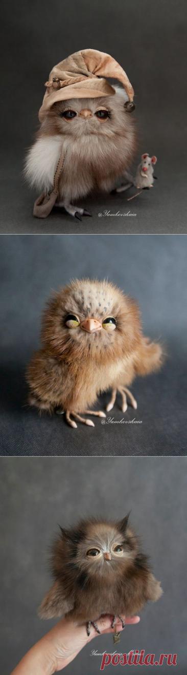 Невероятно реалистичные и очаровательные игрушечные совы Марины Ямковской
