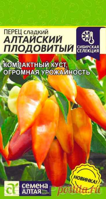 Перец сладкий Алтайский Плодовитый, 0,1 г Сибирская селекция, купить в интернет магазине Seedspost.ru