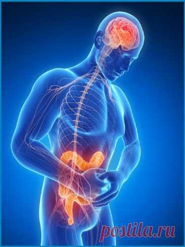 Заболевания КИШЕЧНИКА: 7 симптомов и 3 рекомендации