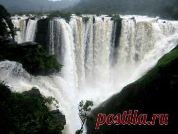 Самый широкий водопад в мире Этот водопад знаменит свой протяженностью, он представляет собой четыре потока, общая ширина водного каскада которых — 472 метра. Герсоппа– это не только самый высокий в мире водопад, это еще и самый большой в Индии. Его длина — 253 метра. Считается, что водопад магический, он странным образом притягивает к себе туристов: ) Герсоппа устремляет свои воды вниз молниеносно в отличие от других водопадов, которые медленно стекают по существующим по...