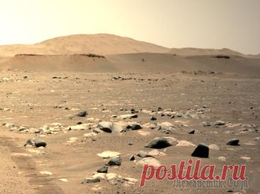 Третий по счету полет вертолета на Марсе - быстрее и дальше, чем прежде! Мини-вертолет НАСА в минувшее воскресенье успешно завершил свой третий по счету полет на Марсе, пролетев большее расстояние, чем прежде, и двигаясь при этом с более высокой скоростью.После двух первых...