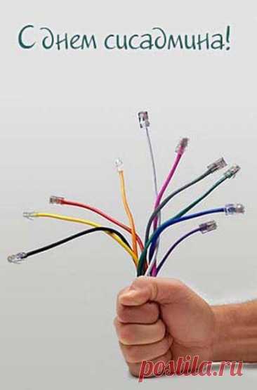 Цветы из интернет кабелей. С днём системного администратора Открытка - Цветы из интернет кабелей. С днём системного администратора