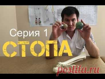 (5) Первая серия. Стопа. Как поэтапно восстановить позвоночник и суставы - YouTube