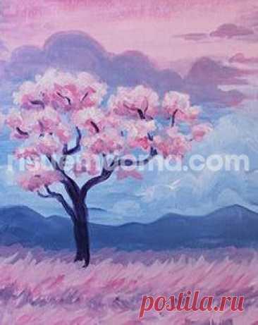 Цветение сакуры Цветение сакурыРозовое цветение сакуры напоминает розовый дым или розовые облака.Очень красиво. Дети будут в восторге.