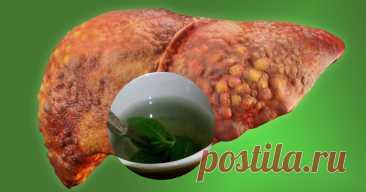 «Мохнатую» от перегрузки и ожирения печень реанимирует стакан этого напитка, возьми 3 ст. л… - Вкусные рецепты