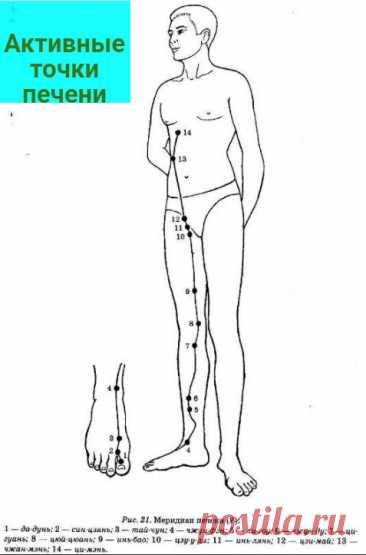 Система оздоровления от китайского доктора Фучжуна. Простой массаж живота и другие техники   7 минут на красоту   Яндекс Дзен
