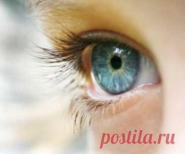 Быстрая зарядка для глаз, которая поможет сохранить зрение Всего две минуты в день помогут вам избежать ухудшения зрения в течение долгих лет. Такой крошечный перерыв с пользой для здоровья вы уж точно можете себе позволить!