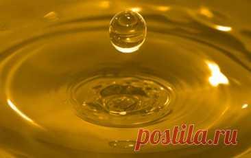 Сегодня изучаем масло. 7 Видов масла и его особенности в приготовлении