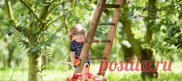 Лето потихоньку близится к концу. Ночи становятся длиннее и холоднее, облака набирают ход. Созревают груши и яблоки, облепиха наливается ярким оранжевым цветом. Мы собираем урожай и готовимся к осени. А каким был август у наших предков? #лето #традиции #фольклор #август