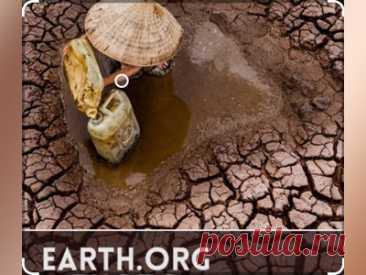 Конкурс фотографии Earth.Org   #Конкурс фотографии #Earth_Org: #призы - #деньги, #доллары, 1 000 долларов, 250 долларов; #публикация работы и интервью