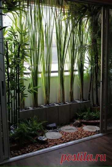 Идеи мини сада — живой уголок природы, куда вы можете сбежать от всех Хотите себе уголок, в котором можно было бы спрятаться ото всех, отдохнуть... Читай дальше на сайте. Жми подробнее ➡