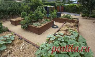 7 фотоидей, как органично вписать грядки в дизайн садового участка | Идеи дизайна (Огород.ru)