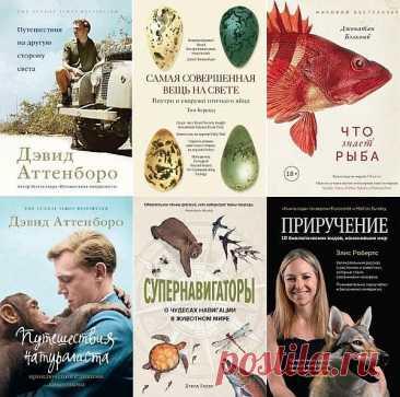 """Новый натуралист в 15 книгах (2018-2021) PDF, FB2 """"Новый натуралист"""" - серия научно-популярных книг для детей и взрослых.На протяжении сотен тысяч лет наши предки выживали благодаря диким растениям и животным. Они были охотниками-собирателями, превосходно знакомыми с дарами природы, принимающими мир таким, какой он есть. А потом"""