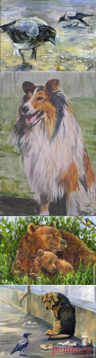 Животные.Маланчева Ольга(Москва)