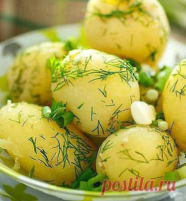 Хочется расцеловать человека, который придумал такое совершенное вкусовое сочетание: укроп + чеснок + картофель!