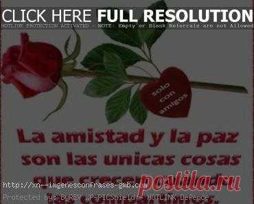 Imagenes De Rosas Archivos Imagenes De Amor Con Frases Y Fotos