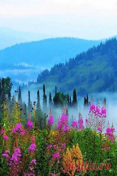 Раннее утро в горах.