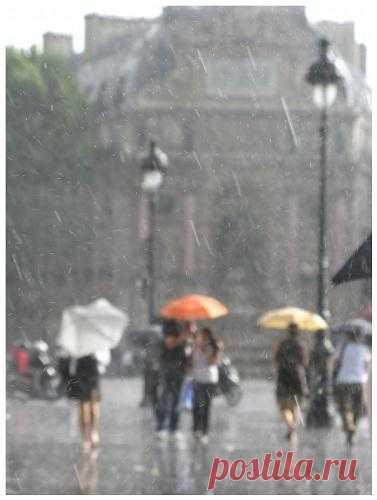 beauty of rain essay