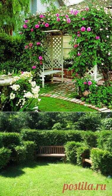 Как сделать живую изгородь для дома или дачи. Инструкция.