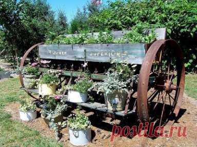 Украшение садового участка. Отличная идея!