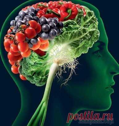 Продукты для молодости мозга  С возрастом снижается эффективность работы нашего мозга, и, к сожалению, это неизбежно — так считают многие исследователи причин возникновения болезни Альцгеймера. Но ученые из Rush University Medical Center (Чикаго) утверждают, что процесс старения мозга обратим!  Они провели ряд изысканий, в которых принимали участие пожилые люди 80-летнего возраста, и выяснили, что существуют продукты, улучшающие работу мозга. Мало того, когнитивные функции испытуемых не толь