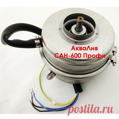 Запчасть для насоса АкваЛив САН-600 Профи: электродвигатель (мотор)