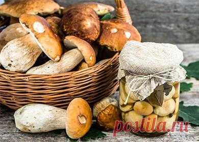 Маринованные белые грибы, рецепт