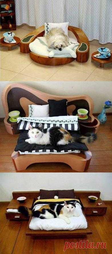 Невероятно! Она существует! Мебель для домашних животных.