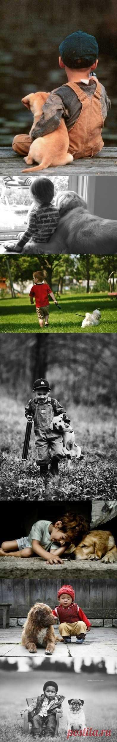 А вы в детстве мечтали о собаке?