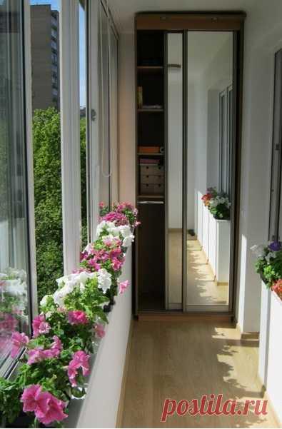El balcón puede convertirse en el trozo del paraíso silencioso en medio de la ciudad ruidosa, y es necesario esto tan un poco para la plenitud de la felicidad: encristalar, plantar las flores, abrir la ventana, y alegrarse de la vida... Y bien, y vmantirovannaya kladovka por zerkalnoy slayding por la puerta no estaría más....))))