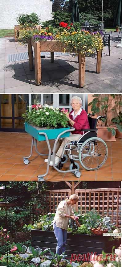 Высокие грядки для пожилых людей.