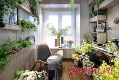 Домашние цветы для украшения интерьера: 5 отличных вариантов Selo.Guru — интернет портал о сельском хозяйстве