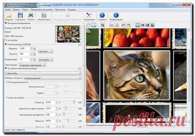 Интернет, программы, полезные советы: PhotoZoom Pro 7.0.6 - увеличение размеров изображений без потери качества