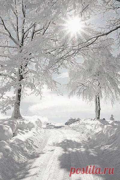 Чёрт возьми, как же хочется снега Ледяного, пушистого с неба.  Лёгкий пар изо рта белой дымкой. Проходя чуть знакомой тропинкой  В сапогах меж лихими домами Звонкий хруст под моими ногами.  Тихий шёпот холодной метели, Писк синиц на ветвях пышной ели.  И столбом из трубы старой печи Тёплый дым поприветствовал вечер.  Как порой ароматного хлеба, Деревенского хочется снега.  ©Должиков