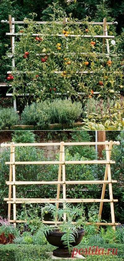 Самодельная садовая решётка для вьющихся роз